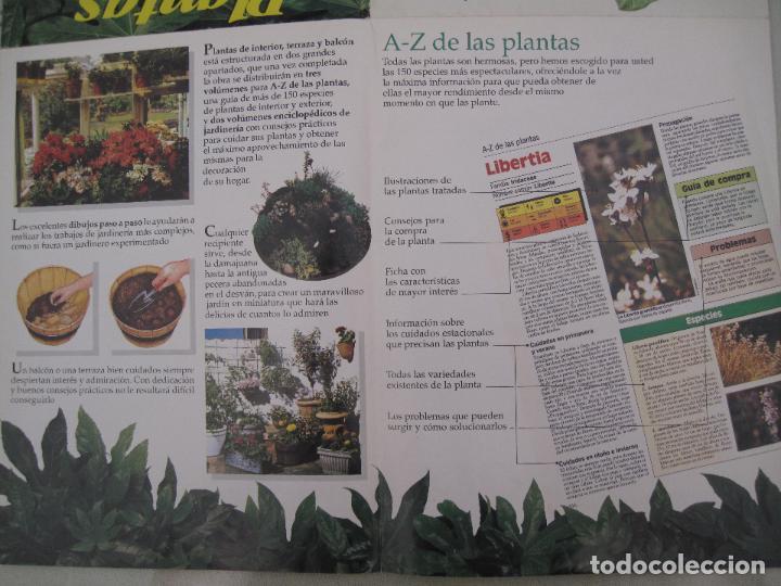 Enciclopedias: GRAN ENCICLOPEDIA PLANTAS DE INTERIOR Y JARDINERIA • Planeta Agostini (50 fascículos + tapas) - Foto 7 - 84345940