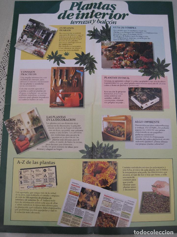 Enciclopedias: GRAN ENCICLOPEDIA PLANTAS DE INTERIOR Y JARDINERIA • Planeta Agostini (50 fascículos + tapas) - Foto 9 - 84345940