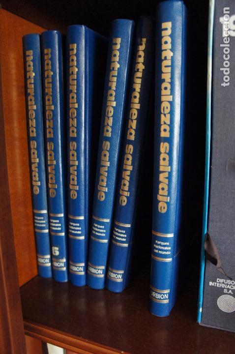 EN PERFECTO ESTADO. FAUNA SALVAJE.PRECIOSAS FOTOGRAFÍAS EN PAPEL COUCHÉ , DESCRIPCIONES EXCELENTE. (Libros Nuevos - Diccionarios y Enciclopedias - Enciclopedias)