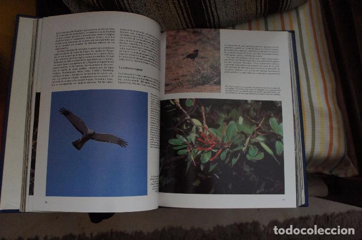 Enciclopedias: En perfecto estado. Fauna Salvaje.preciosas fotografías en papel couché , descripciones excelente. - Foto 2 - 87507008