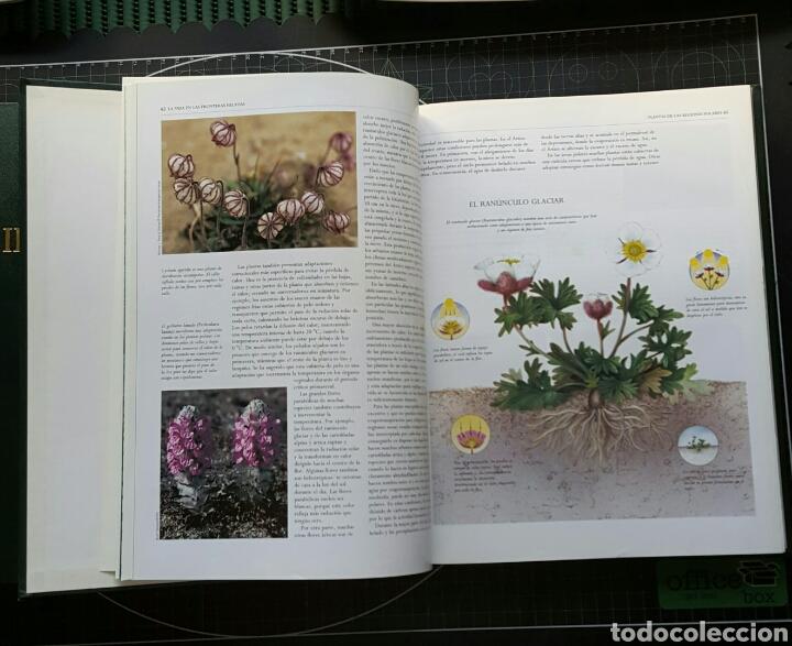 Enciclopedias: Enciclopedia Biblioteca Ilustrada de la Tierra-National Geographic/Completa - Foto 3 - 95212215