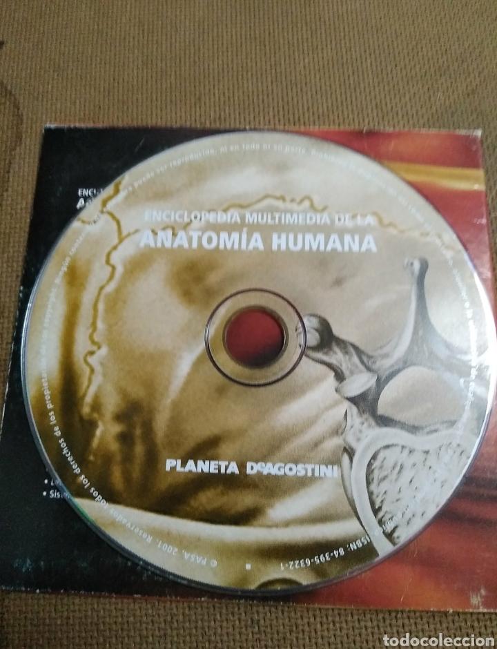 Enciclopedias: Única!! Enciclopedia multimedia anatomía humana. Pc Windows. Ceac Centro de Estudios - Foto 5 - 101147648