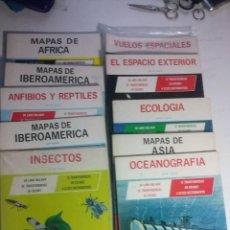 Enciclopedias: 10 PUBLICACIONES DIDACTICAS DE MILLIKEN PUBLISHING EN ESPAÑOL. Lote 112451471