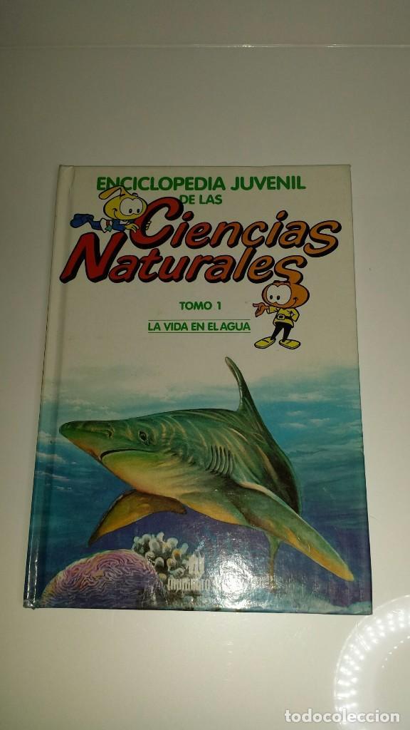 ENCICLOPEDIA JUVENIL DE LAS CIENCIAS NATURALES, LOS SNORKELS 1986, TOMO 1 LA VIDA EN EL AGUA (Libros Nuevos - Diccionarios y Enciclopedias - Enciclopedias)