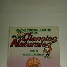 Enciclopedias: ENCICLOPEDIA JUVENIL DE LAS CIENCIAS NATURALES, LOS SNORKELS 1986, TOMO 10, NUESTRO CUERPO IV. Lote 184856246