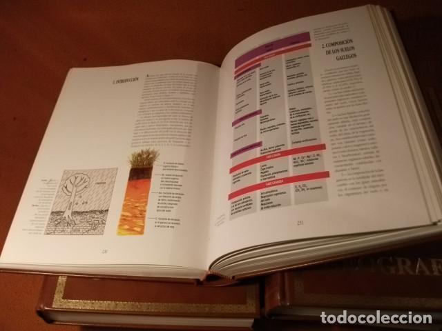 Enciclopedias: ENCICLOPÈDIA DE LUJO , GEOGRAFÌA DE GALICIA. AL 25% DE SU VALOR - Foto 4 - 125342523