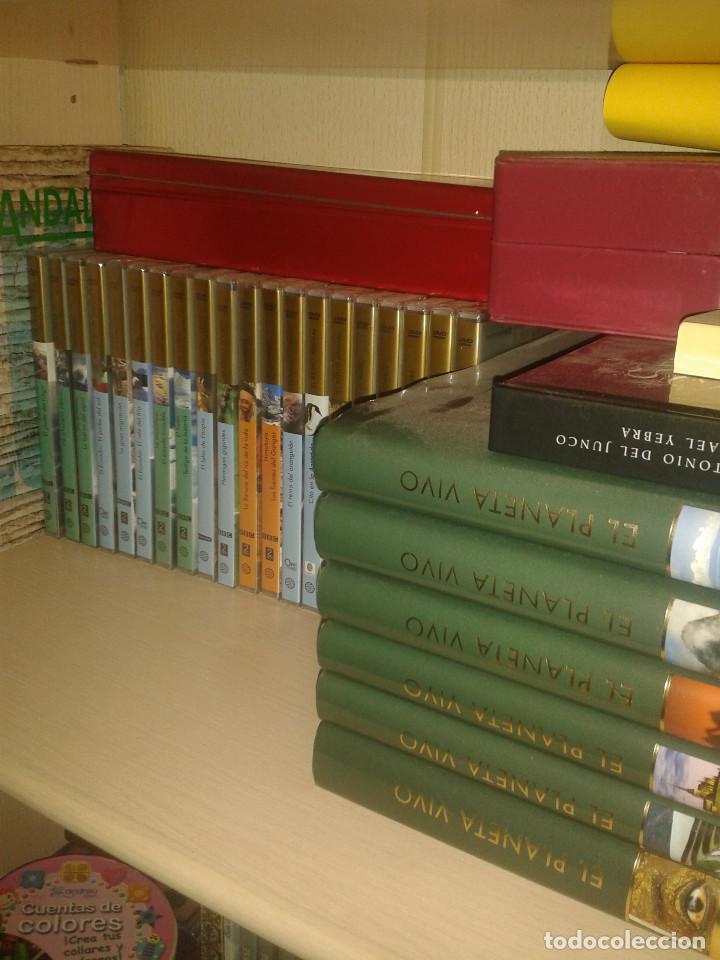 ENCICLOPEDIA EL PLANETA VIVO + DVDS (Libros Nuevos - Diccionarios y Enciclopedias - Enciclopedias)