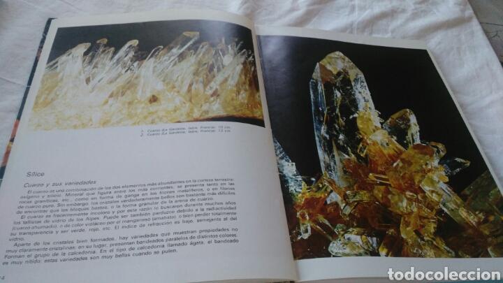 Enciclopedias: ENCICLOPEDIA DE LOS MINERALES JAIMES LIBROS POR PIERRE BARIAND - Foto 3 - 133201974