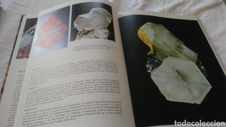 Enciclopedias: ENCICLOPEDIA DE LOS MINERALES JAIMES LIBROS POR PIERRE BARIAND - Foto 4 - 133201974