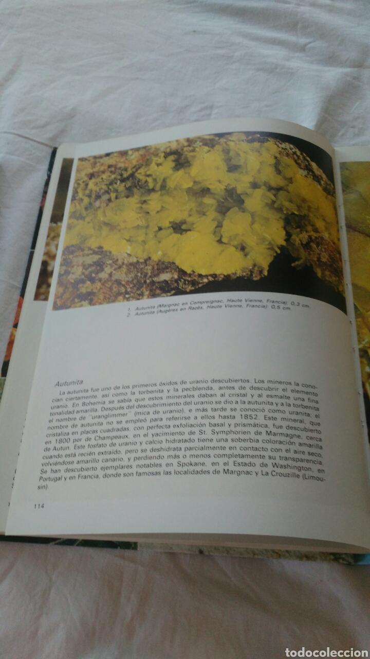 Enciclopedias: ENCICLOPEDIA DE LOS MINERALES JAIMES LIBROS POR PIERRE BARIAND - Foto 5 - 133201974