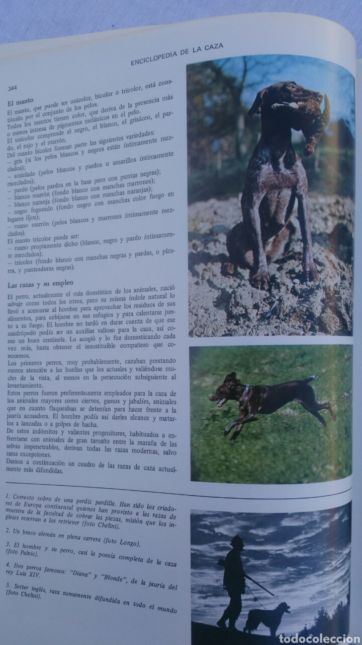 Enciclopedias: ENCICLOPEDUA DE LA CAZA.ARTE Y TECNICA BUEN CAZADOR.2 TOMOS COMPLETA.VERGARA.FERNANDO HUERTA Y PALAU - Foto 7 - 133552346