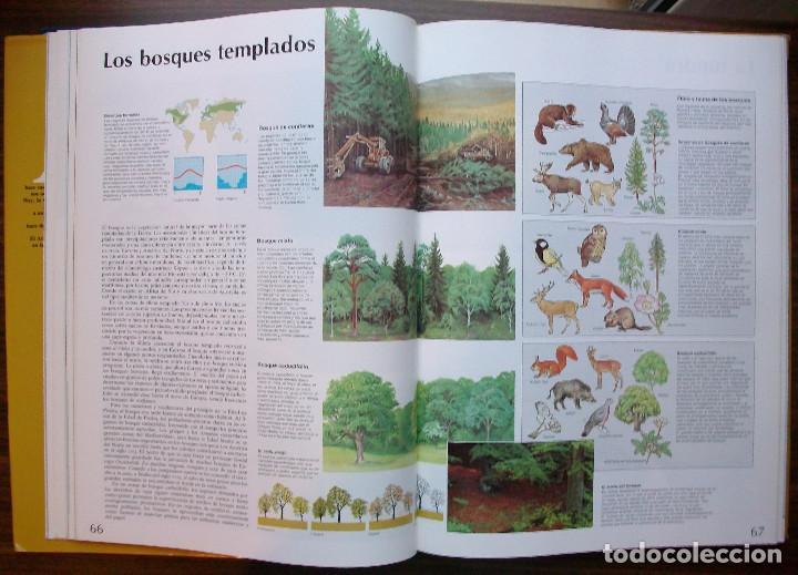 Enciclopedias: ATLAS DEL MUNDO. AGUILAR/ SANTILLANA. Luis Bergquist - Foto 4 - 137353242