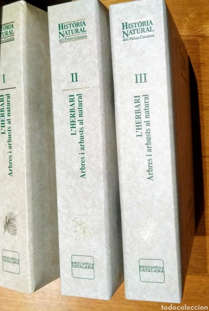 1998 ENCICLOPEDIA CATALANA, L'HERBARI, 3 CARPETAS (Libros Nuevos - Diccionarios y Enciclopedias - Enciclopedias)