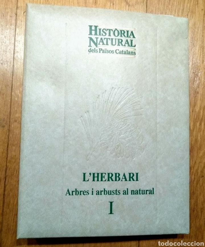 Enciclopedias: 1998 Enciclopedia Catalana, LHerbari, 3 carpetas - Foto 4 - 144408097