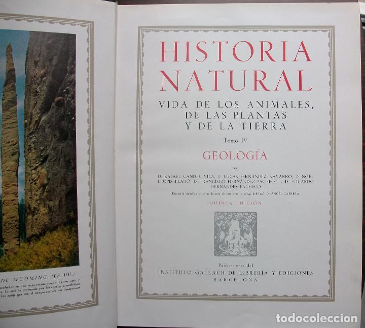 Enciclopedias: HISTORIA NATURAL - VIDA DE LOS ANIMALES, DE LAS PLANTAS Y DE LA TIERRA - 4 TOMOS - Foto 2 - 147739494