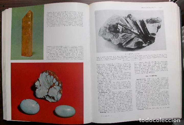 Enciclopedias: HISTORIA NATURAL - VIDA DE LOS ANIMALES, DE LAS PLANTAS Y DE LA TIERRA - 4 TOMOS - Foto 3 - 147739494