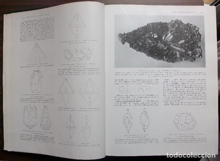 Enciclopedias: HISTORIA NATURAL - VIDA DE LOS ANIMALES, DE LAS PLANTAS Y DE LA TIERRA - 4 TOMOS - Foto 4 - 147739494