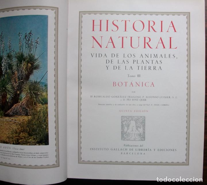 Enciclopedias: HISTORIA NATURAL - VIDA DE LOS ANIMALES, DE LAS PLANTAS Y DE LA TIERRA - 4 TOMOS - Foto 7 - 147739494