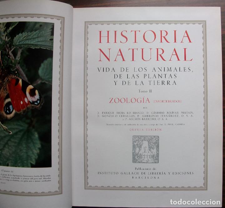 Enciclopedias: HISTORIA NATURAL - VIDA DE LOS ANIMALES, DE LAS PLANTAS Y DE LA TIERRA - 4 TOMOS - Foto 11 - 147739494