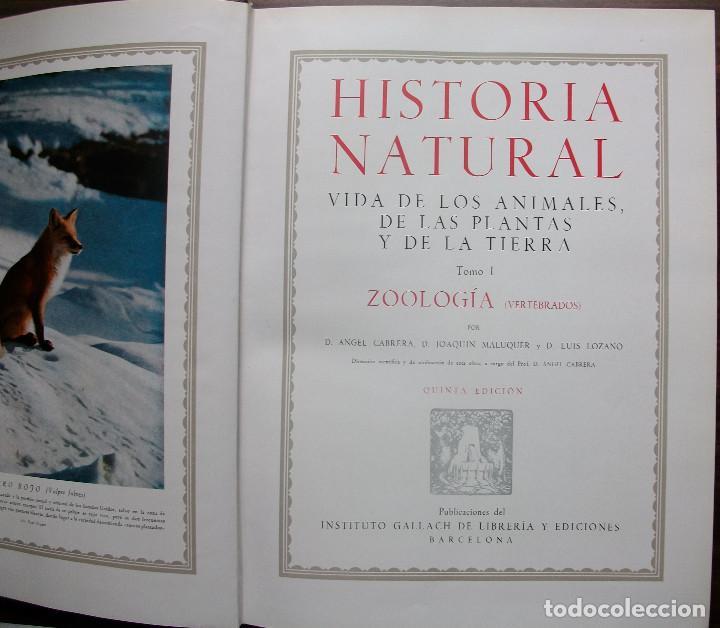 Enciclopedias: HISTORIA NATURAL - VIDA DE LOS ANIMALES, DE LAS PLANTAS Y DE LA TIERRA - 4 TOMOS - Foto 16 - 147739494