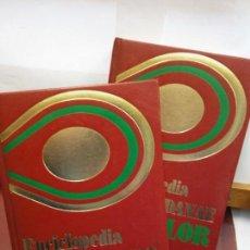 Enciclopedias: STQ.ENCICLOPEDIA BASICA EN COLOR.2 TOMOS.EDT, DANAE... Lote 151076638