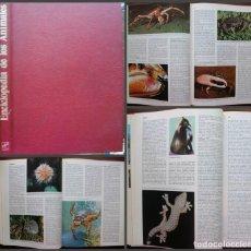 Enciclopedias: ENCICLOPEDIA DE LOS ANIMALES. EDICIONES NAUTA 1975. Lote 171159150