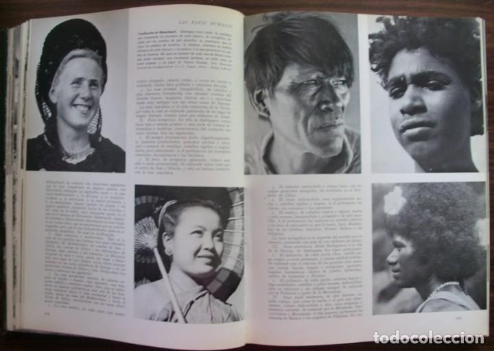 Enciclopedias: LAS RAZAS HUMANAS. 2 TOMOS. AMERICA-AFRICA-EUROPA. 1971 - Foto 4 - 171189133