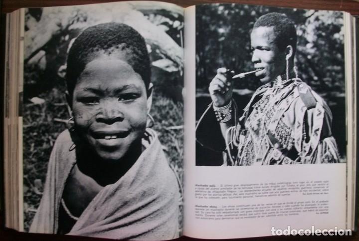 Enciclopedias: LAS RAZAS HUMANAS. 2 TOMOS. AMERICA-AFRICA-EUROPA. 1971 - Foto 8 - 171189133