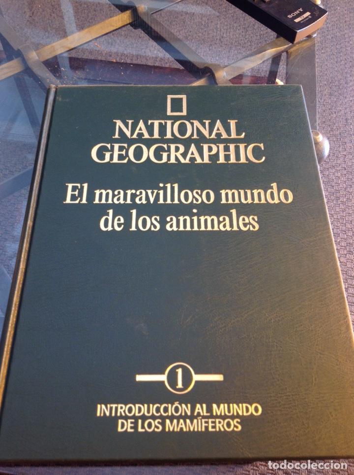 EL MARAVILLOSO MUNDO DE LOS ANIMALES NATIONAL GEOGRAPHIC (Libros Nuevos - Diccionarios y Enciclopedias - Enciclopedias)