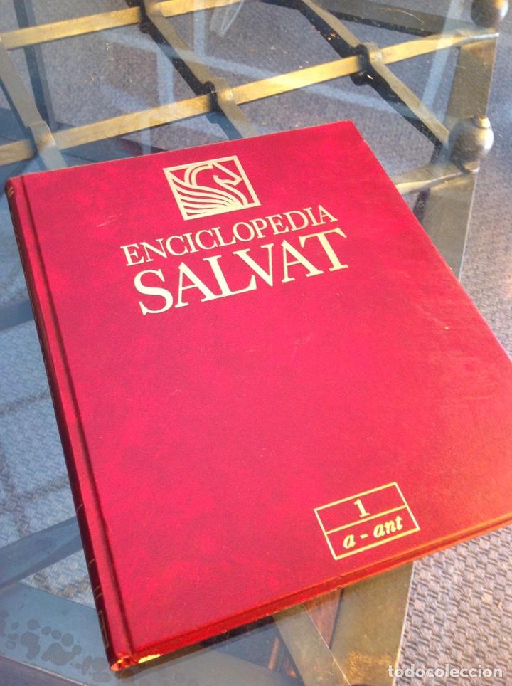 ENCICLOPEDIA SALVAT 1997 (Libros Nuevos - Diccionarios y Enciclopedias - Enciclopedias)