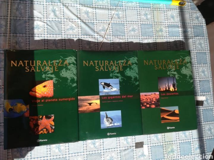 Enciclopedias: Enciclopedia Naturaleza Salvaje - Foto 3 - 179149405