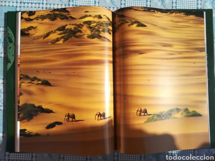 Enciclopedias: Enciclopedia Naturaleza Salvaje - Foto 6 - 179149405