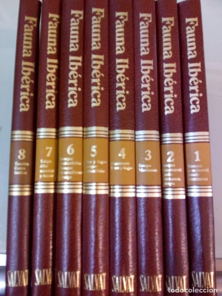 ENCICLOPEDIA SALVAT DE LA FAUNA IBERICA Y EUROPEA ,FELIX RODRIGUEZ DE LA FUENTE,8 TOMOS COMO NUEVA (Libros Nuevos - Diccionarios y Enciclopedias - Enciclopedias)