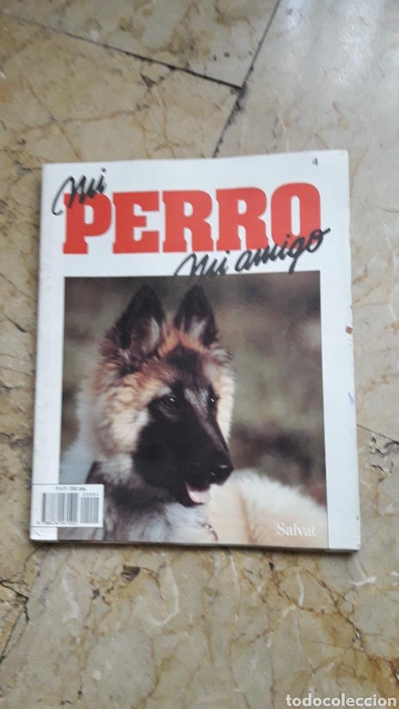 Enciclopedias: ENCICLOPEDIA MI PERRO MI AMIGO - Foto 3 - 192913563