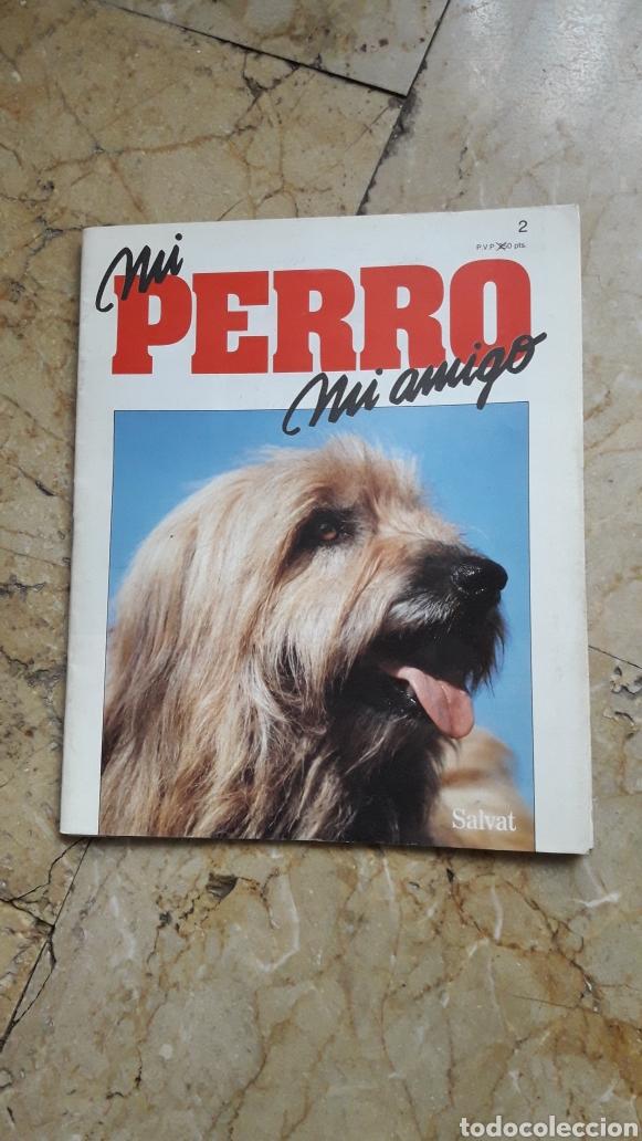 Enciclopedias: ENCICLOPEDIA MI PERRO MI AMIGO - Foto 5 - 192913563