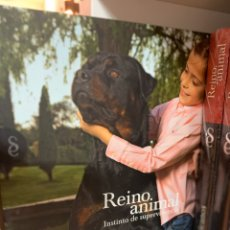 Enciclopedias: COLECCIÓN REINO ANIMAL. Lote 195057110