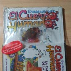 Enciclopedias: ÉRASE UNA VEZ EL CUERPO HUMANO N 20 + DVD PRECINTADO. Lote 197378525