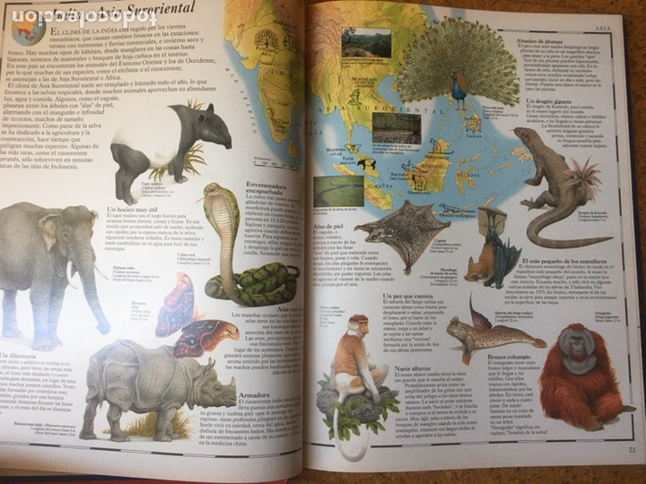 Enciclopedias: Los grandes atlas visuales. 2 tomos. El Periodico - Foto 2 - 199183202