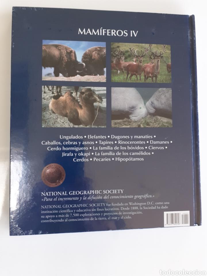 Enciclopedias: ENCICLOPEDIA DE LOS ANIMALES. !! PRECINTADA!!. LIBRO + DVD. - Foto 2 - 200316125