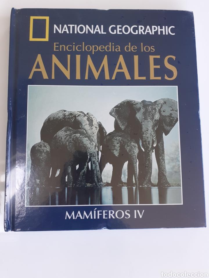 ENCICLOPEDIA DE LOS ANIMALES. !! PRECINTADA!!. LIBRO + DVD. (Libros Nuevos - Diccionarios y Enciclopedias - Enciclopedias)