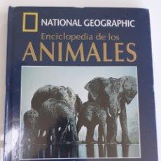 Enciclopedias: ENCICLOPEDIA DE LOS ANIMALES. !! PRECINTADA!!. LIBRO + DVD.. Lote 200316125