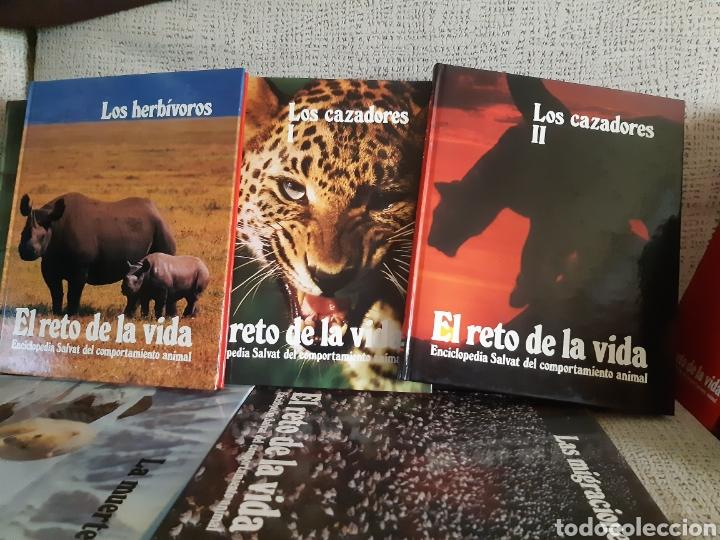 Enciclopedias: Enciclopedia.El reto de la vida - Foto 2 - 202766018