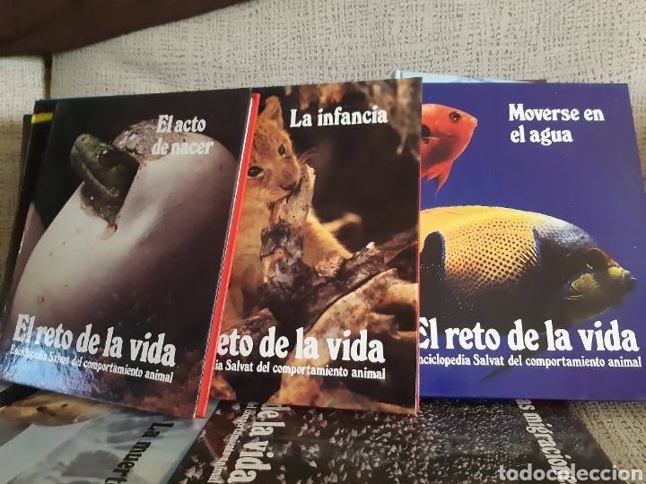 Enciclopedias: Enciclopedia.El reto de la vida - Foto 3 - 202766018