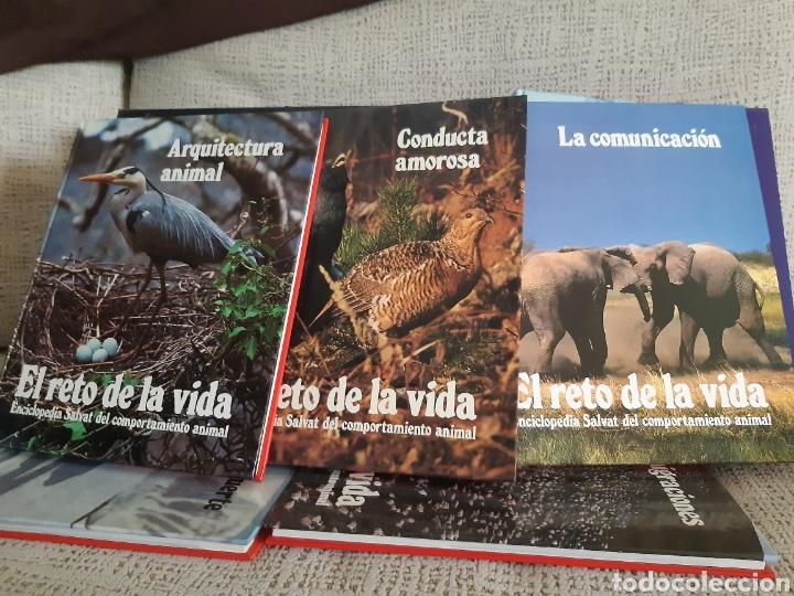 Enciclopedias: Enciclopedia.El reto de la vida - Foto 4 - 202766018