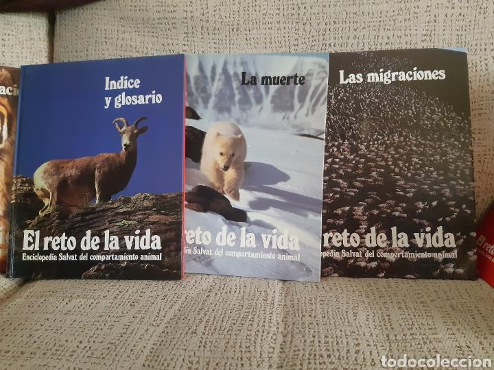 Enciclopedias: Enciclopedia.El reto de la vida - Foto 5 - 202766018