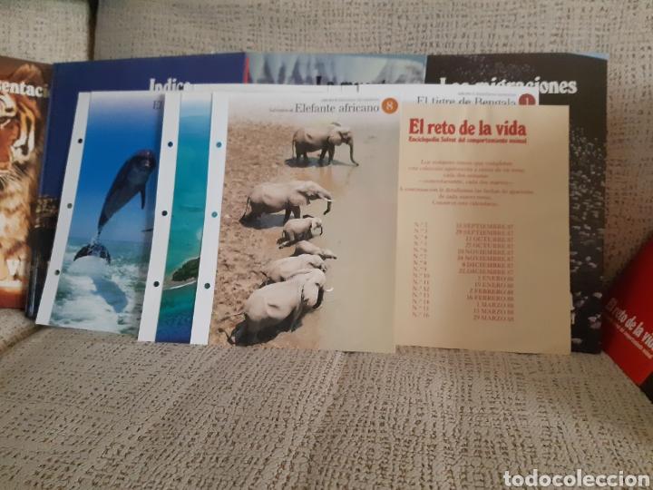 Enciclopedias: Enciclopedia.El reto de la vida - Foto 6 - 202766018