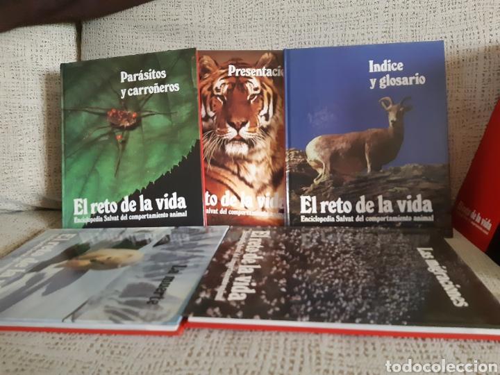 ENCICLOPEDIA.EL RETO DE LA VIDA (Libros Nuevos - Diccionarios y Enciclopedias - Enciclopedias)