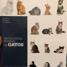 Enciclopedias: ENCICLOPEDIA MUNDIAL DE GATOS DE VECCHI TAPA DURA. Lote 222384946