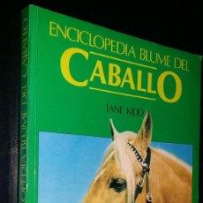Enciclopedias: ENCICLOPEDIA DEL CABALLO JANE KIDD 1987. TAPA BLANDA.. Lote 231553570
