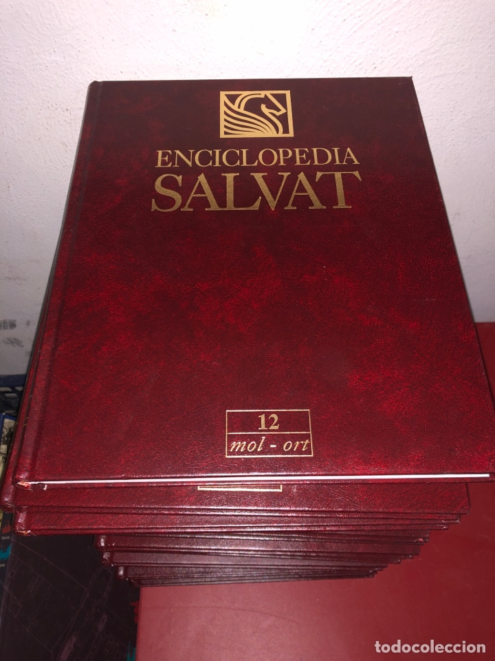 ENCICLOPEDIA SALVAT COMPLETA 12 TOMOS (Libros Nuevos - Diccionarios y Enciclopedias - Enciclopedias)